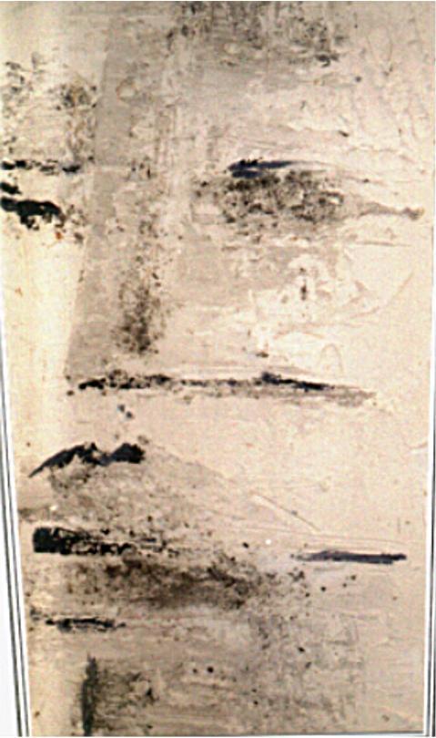 kop 08